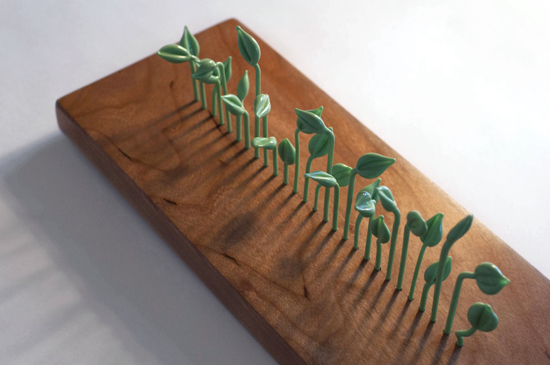 Glass Sprouts on Chrerry Wood Base