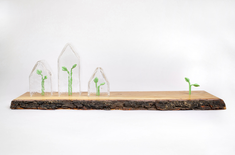 Glass House and Sprouts on Chrerry Wood Base