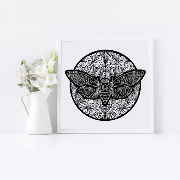 Black and White Print of Cicada