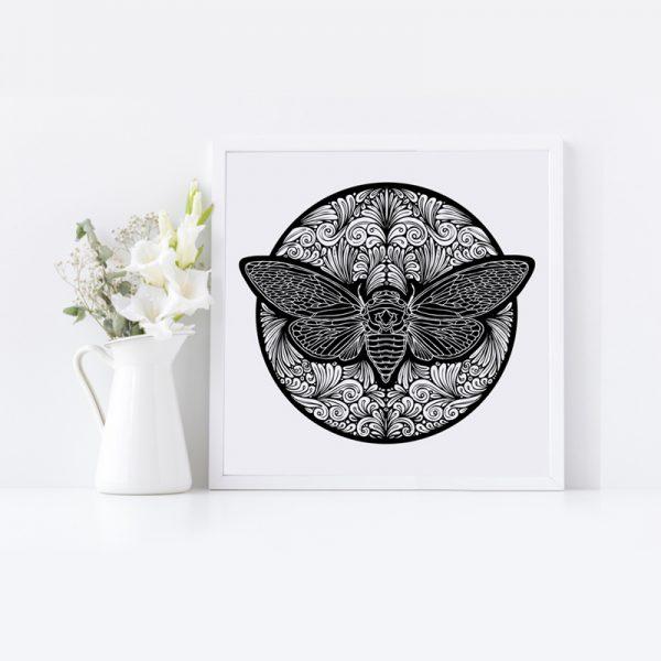 Black and White Print of Cicada